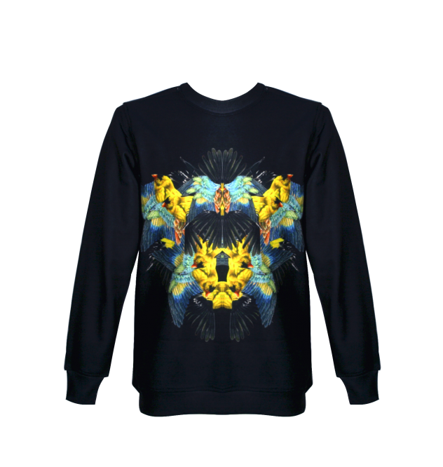 blue wings sweatshirt